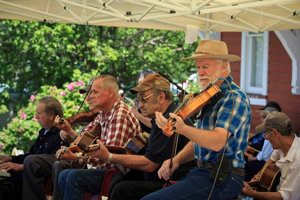 Music, live performance, men playing fiddles and guitars