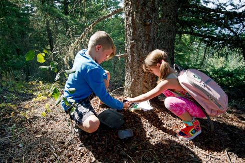 Discover something new when geocaching in Valemount