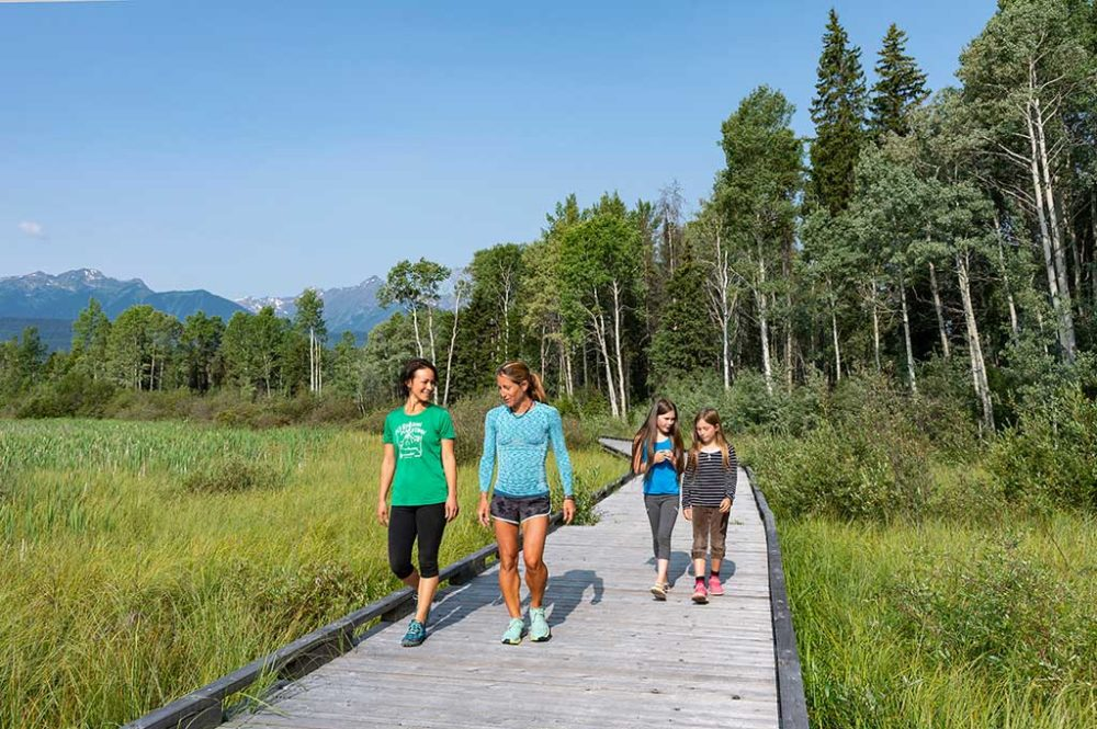 An easy hike in Cranberry Marsh, along the wooden walkway in Valemount, BC