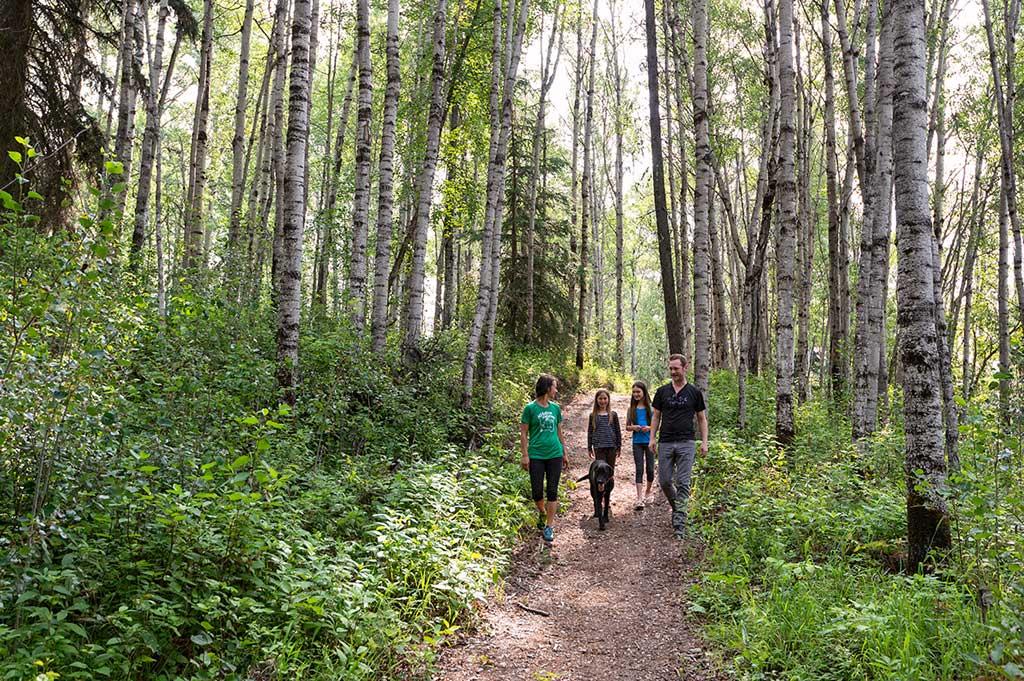 Hiking   Tourism Valemount