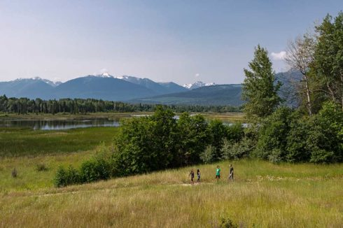 Hiking group on open trail in grassy field with view of trees and mountains