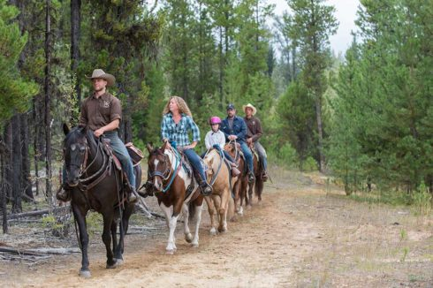 Guided horseback trail rides through the open forest
