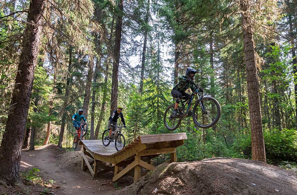 Valemount Mountain Bike Park - jumps galore