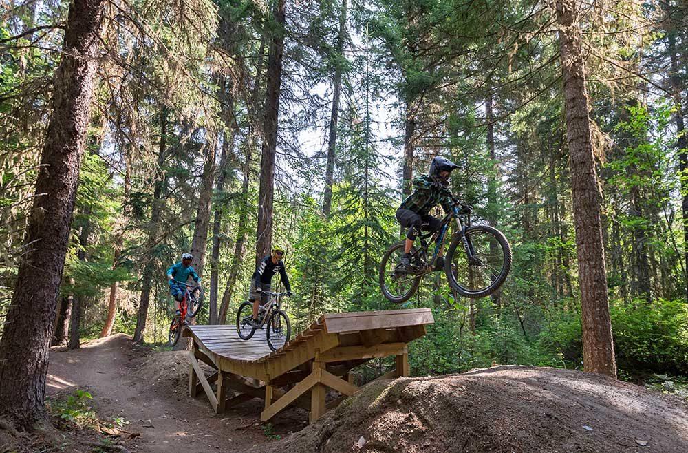Valemount Mountain Bike Park - jumps galore