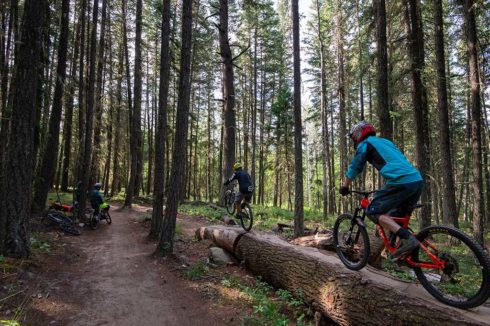 Challenging mountain bike trails in Valemount
