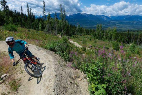 Choose your level when mountain biking in Valemount