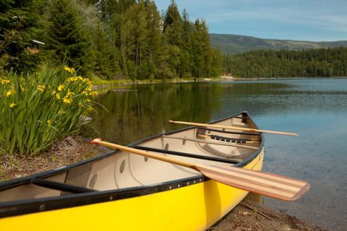 Yellow canoe pulled up on shore of calm lake with yellow flowers nearby. Enjoy some summer water fun!