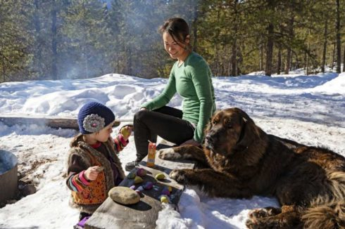 Warming up by the fire, in the snow, mother and toddler and family dog in the sunshine